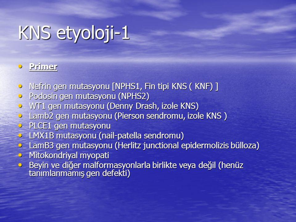 KNS etyoloji-1 Primer. Nefrin gen mutasyonu [NPHS1, Fin tipi KNS ( KNF) ] Podosin gen mutasyonu (NPHS2)